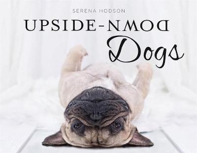 Upside-Down Dogs by Serena Hodson image