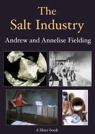 The Salt Industry by Andrew Philip Fielding