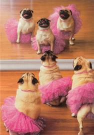 Avanti Greeting Card - Pug Ballet