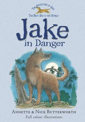 Jake in Danger by Annette Butterworth image
