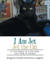 I Am Jet Jet the Cat by Brigitta Gisella Geltrich-Ludgate image