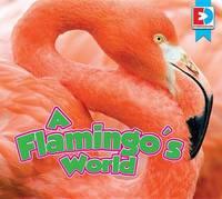 A Flamingo's World by John Willis