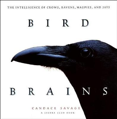 Bird Brains by Candace Sherk Savage