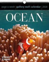 Ocean Page-A-Week Gallery Wall Calendar 2020 by Workman Publishing