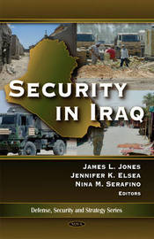 Security in Iraq image