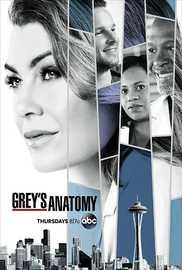 Grey'S Anatomy: Season 14 on DVD