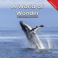 A World of Wonder by Brent A Ford