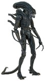 Aliens: Alien Warrior (1986) - 1:4 Scale Action Figure