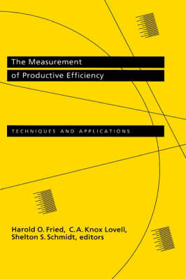 The Measurement of Productive Efficiency image
