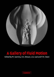 A Gallery of Fluid Motion by M. Samimy image