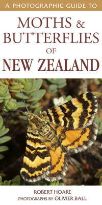 Photographic Guide to Moths & Butterflies of New Zealand by Robert Hoare