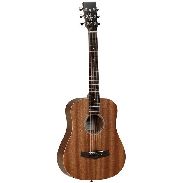 Tanglewood Winterleaf Travel Size guitar w/bag