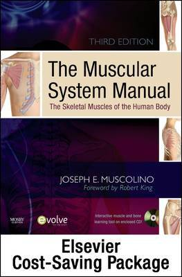 The Muscular System Manual - Text, Flashcards 2e, and Coloring Book 2e Package by Joseph E Muscolino image