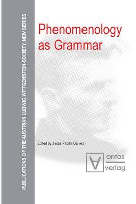 Phenomenology as Grammar image