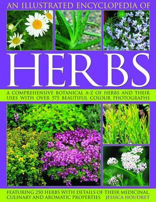 Illustrated Encyclopedia of Herbs by Jessica Houdret image