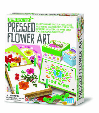 4M Green Creativity - Pressed Flower Art