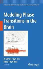 Modeling Phase Transitions in the Brain image