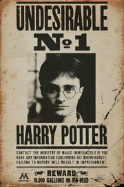 Harry Potter Poster - Undesirable (519)