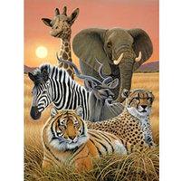 3D LiveLife Poster - Safari