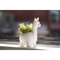 Kikkerland: Lloyd the Llama Planter image