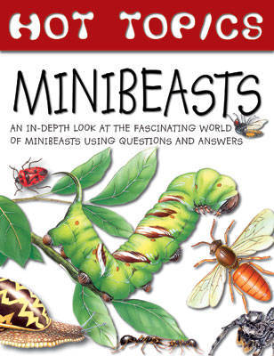 Hot Topics: Minibeasts by Gerald Legg image