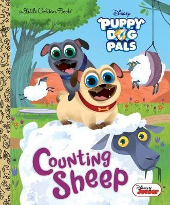Counting Sheep (Disney Junior Puppy Dog Pals) by Judy Katschke image