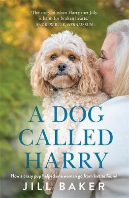 A Dog Called Harry by Jill Baker