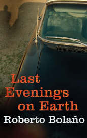 Last Evenings On Earth by Roberto Bolano image
