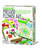 4M Green Creativity - Pressed Flower Art