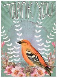 Papaya Thank You Card - Golden Bird