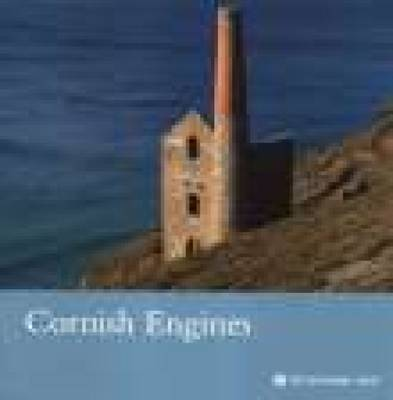 Cornish Engines, Cornwall by Peter Laws image