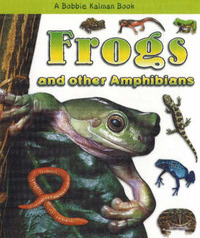 Frogs and Other Amphibians by Bobbie Kalman image