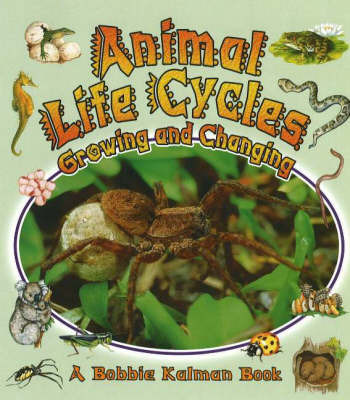Animal Life Cycles by Bobbie Kalman