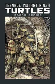 Teenage Mutant Ninja Turtles by Paul Allor