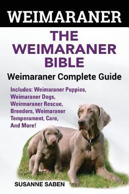 Weimaraner by Susanne Saben