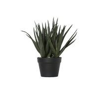 General Eclectic: Artificial Plant - Large Aloe image