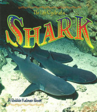 The Life Cycle of the Shark by John Crossingham