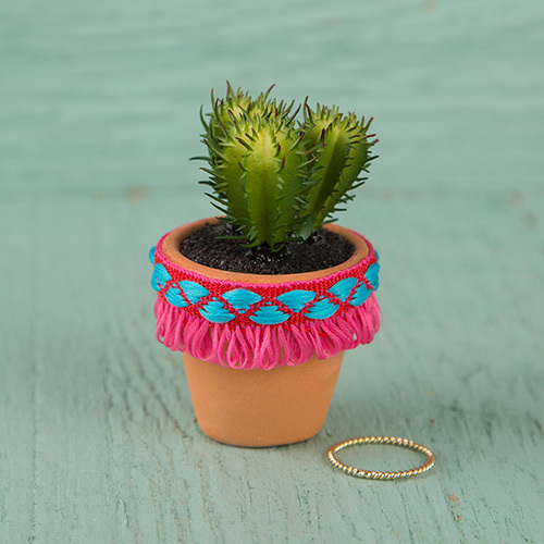 Natural Life: Succulent - Hot Pink Fringe