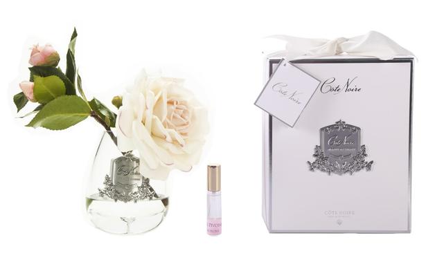 Cote Noire: Tea Rose Pink Blush - Clear