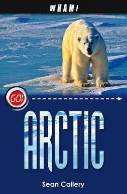 Wham! Arctic by Sean Callery