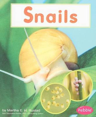 Snails by Martha E.H. Rustad image