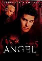Angel Season 5 - Part 1 on DVD