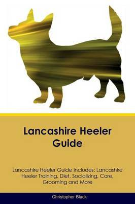Lancashire Heeler Guide Lancashire Heeler Guide Includes by Christopher Black image
