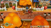 Story of Seasons: Friends of Mineral Town for PS4
