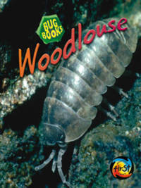 Woodlouse by Karen Hartley image