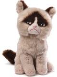 A Li'l Grumpy Cat Beanie