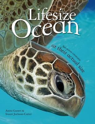 Lifesize: Ocean by Anita Ganeri