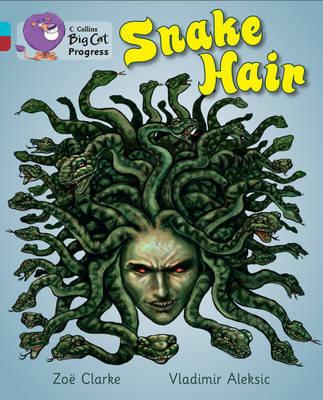 Snake Hair by Zoe Clarke image