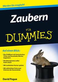 Zaubern Fur Dummies by David Pogue image