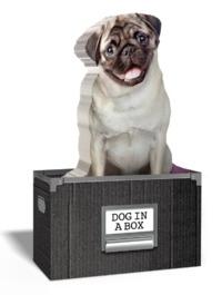 Mustard: Dog In A Box - Novelty Sticky Notes
